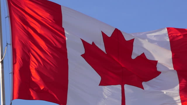 Close-up to Canadian National Flag Waving Flying in Blue Clear Sky