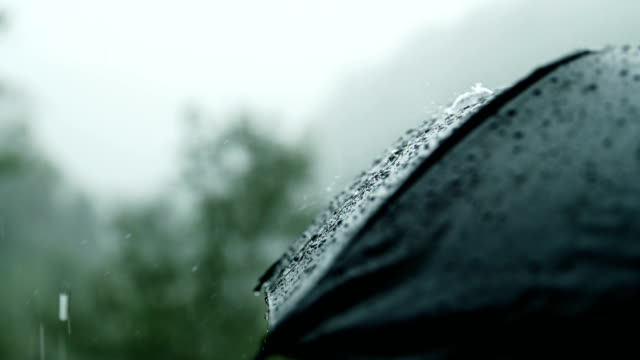 close-up umbrella with raining - climate action stock videos & royalty-free footage