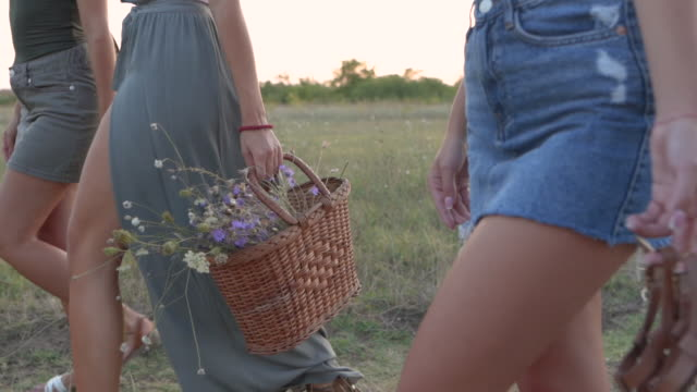 close-up video of women walking in nature - picnic basket stock videos & royalty-free footage