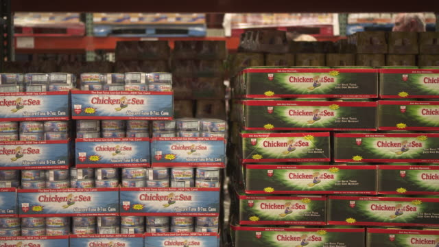 vídeos de stock, filmes e b-roll de closeup view of stacked wholesale cans of chicken of the sea tuna at a costco warehouse usa fkax253n clip taken from programme rushes ablb597x - conserva