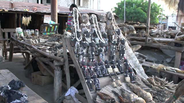 close-up view of the akodessawa fetish market or marche des feticheurs in lome, togo - fetischismus stock-videos und b-roll-filmmaterial