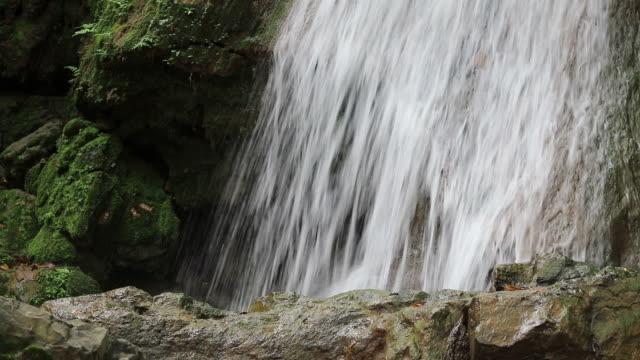 Nahaufnahme der Wasserfälle von Regenwald Felsen.