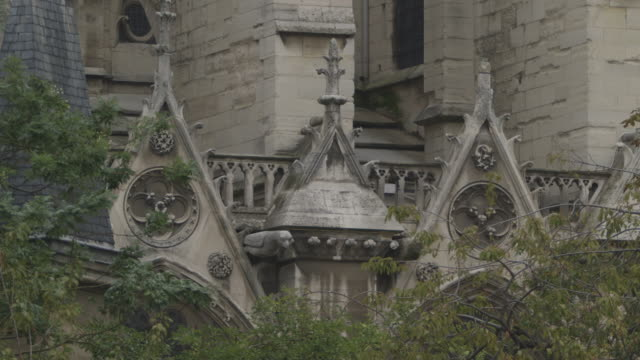 close-up view of weathered stonework on notre dame de paris, france. - weathered stock videos & royalty-free footage