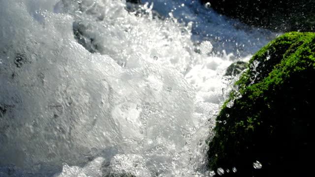 vídeos de stock, filmes e b-roll de fluxo da água do close-up - pedra solta