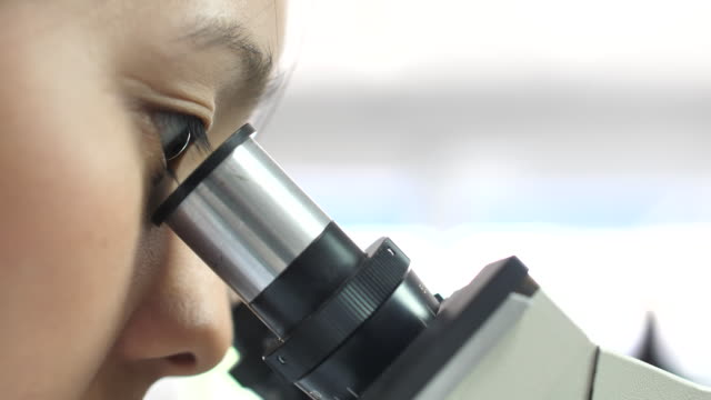close-up woman scientists microscope in the laboratory - microscope stock videos & royalty-free footage