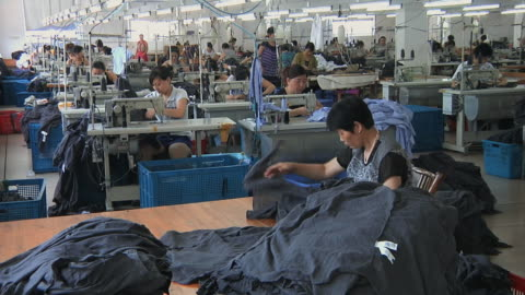 ws clothing factory floor with rows of women at sewing machines / ningbo, zhejiang, china - factory stock videos & royalty-free footage