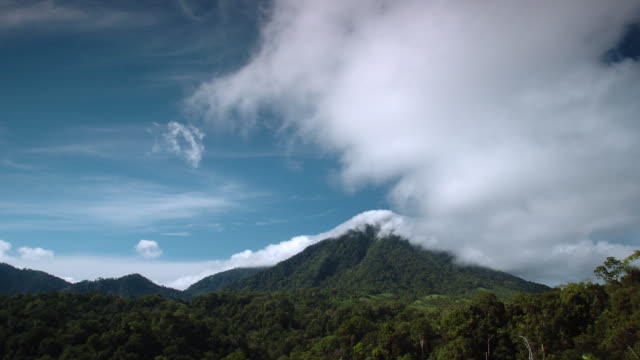 stockvideo's en b-roll-footage met tl cloud billows over rainforest and volcano, sulawesi - tropisch regenwoud