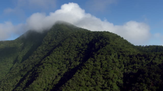 A cloud covers the top of the Blue Mountains in Jamaica.