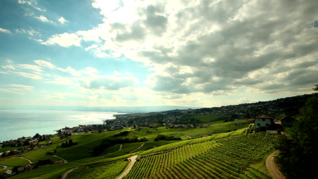 cloud rapid moving over of vineyards - lake geneva stock videos & royalty-free footage