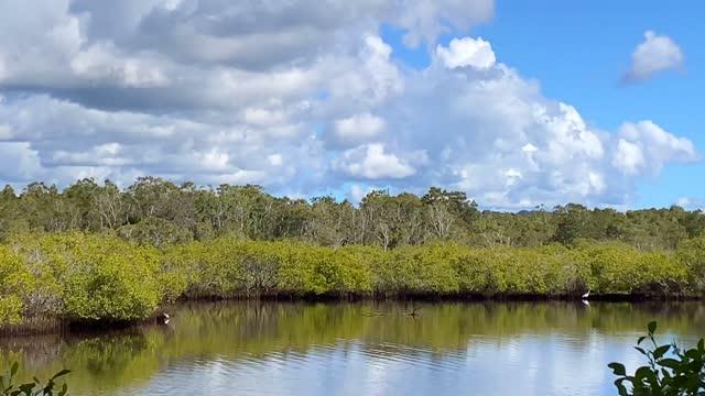 molnreflektion i stilla tea tree lake vatten - water's edge bildbanksvideor och videomaterial från bakom kulisserna
