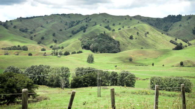 cloud shadows roll across fields - telegraph pole stock videos & royalty-free footage