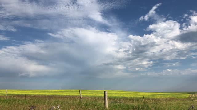 stockvideo's en b-roll-footage met clouds and fields - houten paal