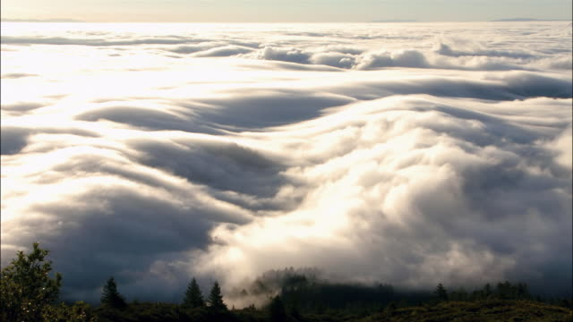 T/L, WS clouds and fog, Mount Rainer National Park, Washington, USA