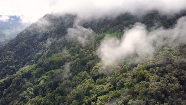 clouds and mountains view - papua stock videos and b-roll footage