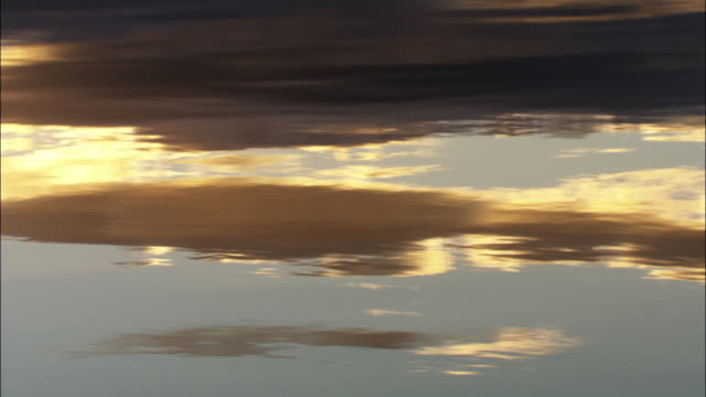 "vídeos de stock e filmes b-roll de clouds at sunset reflected on surface of loch, scotland, uk - ""bbc natural history"""