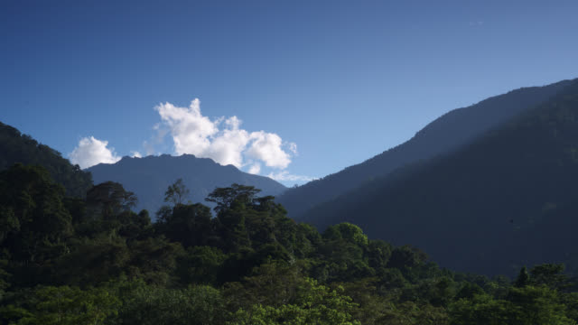 tl clouds billow over rainforest and hills, sumatra - rainforest stock videos & royalty-free footage