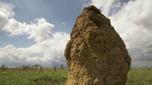 Clouds billow over termite mounds in grassland.