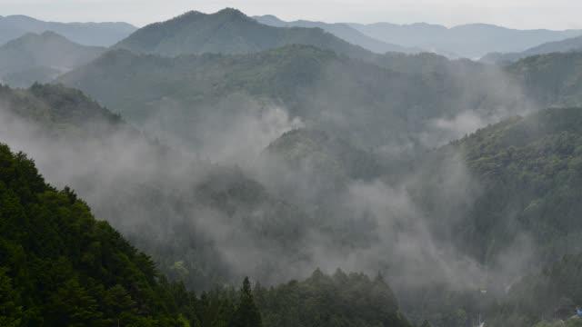 tl clouds billow over trees, japan. - takashima shiga stock videos & royalty-free footage