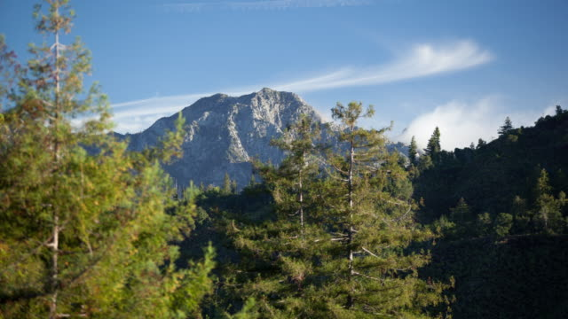 clouds blow over mountain peak - treetop stock videos & royalty-free footage