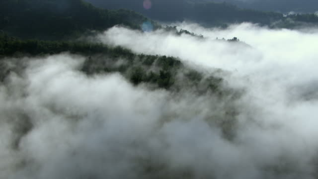 Clouds cover a rain forest in Jamaica