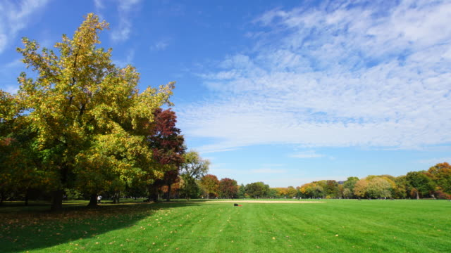 pan clouds cover the early autumn great lawn. - great lawn stock videos and b-roll footage