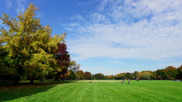 clouds cover the early autumn great lawn. - great lawn stock videos and b-roll footage
