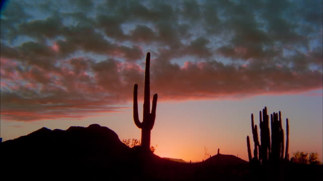 Clouds disappear in orange and blue skies over the Organ Pipe Cactus National Monument in the Arizona desert.