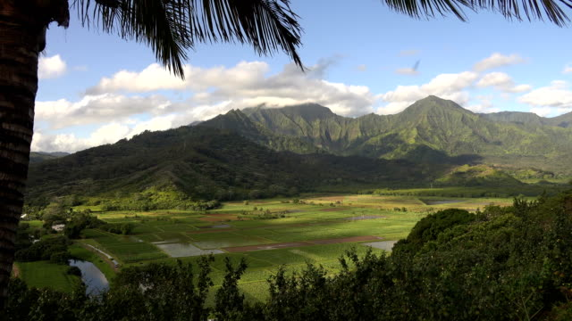 clouds flowing over tops of kauai island mountains - butte rocky outcrop stock videos & royalty-free footage