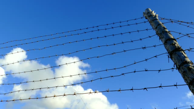 vídeos de stock e filmes b-roll de clouds fly for barbed wire fences (time lapse) - divisa