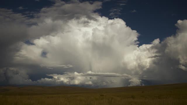 clouds form over cerrado grassland. - cerrado stock videos & royalty-free footage