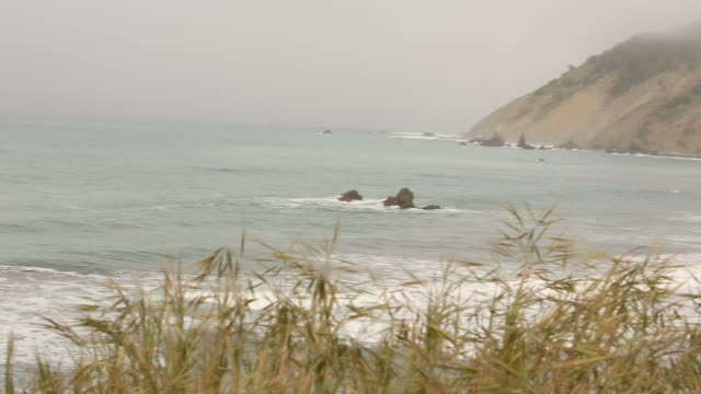 clouds, hills rocks and the waves from the pacific ocean near highway 1 in california. - sea grass plant点の映像素材/bロール