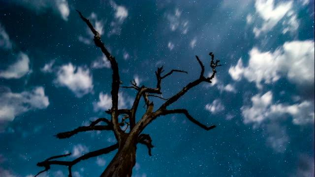 clouds in night sky, sri lanka. - sri lanka stock videos & royalty-free footage