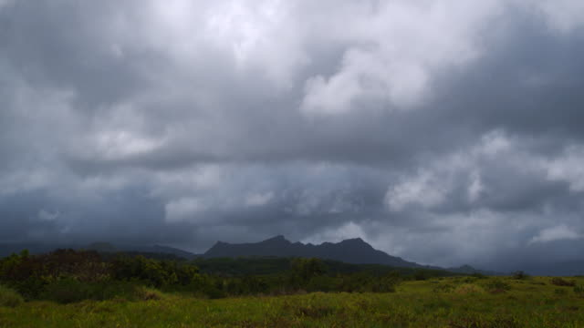 clouds moving across the sky - 熱帯の低木点の映像素材/bロール