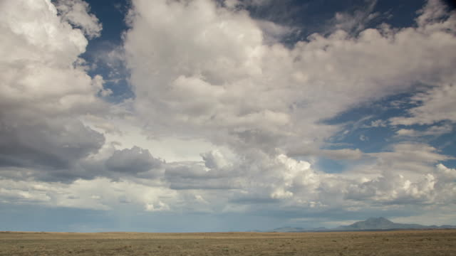 ws t/l clouds moving in open field with mountain in distance / flagstaff, arizona, usa - flagstaff arizona video stock e b–roll