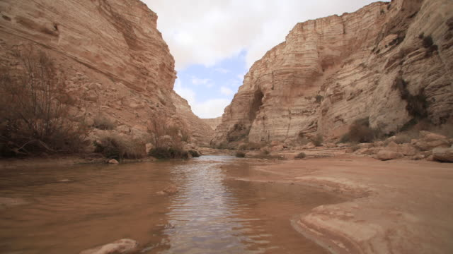 clouds over desert spring ein avdat, runing water in a canyon