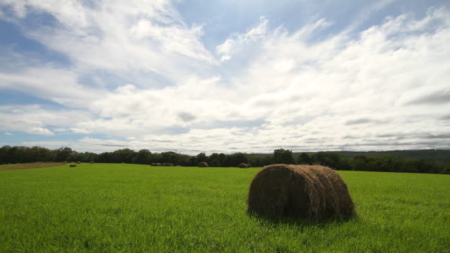 clouds over hay bales - fieno video stock e b–roll