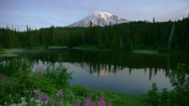 TIME LAPSE WIDE SHOT clouds over Mount Rainier and Reflection Lakes surrounded by forest at sunrise