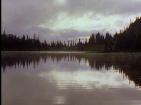 clouds (fog?) over pine trees in forest with lake in foreground / mt rainier national park, washington - mt rainier national park stock videos & royalty-free footage