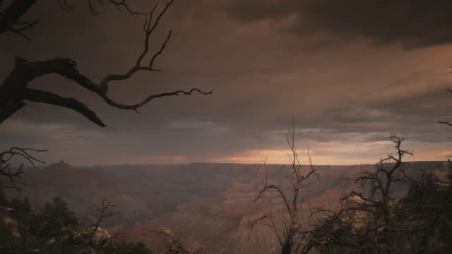 stockvideo's en b-roll-footage met ws clouds over rock formations in grand canyon national park, bare tree branches in foreground, arizona, usa - bare tree