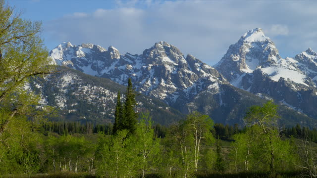 medium pan clouds over snowy grand teton in teton range with green trees in foreground, grand teton national park, wyoming - grand teton stock videos & royalty-free footage
