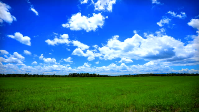 clouds over the green field summer landscape, time lapse. - national grassland stock videos & royalty-free footage
