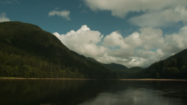 clouds pass over forested inlet. - inlet stock videos & royalty-free footage