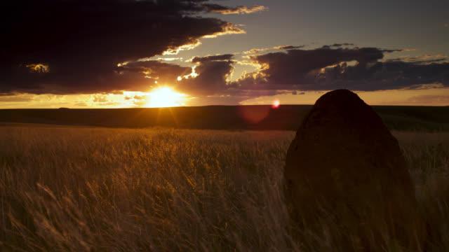clouds pass overhead termite mound as sun sets. - cerrado stock videos & royalty-free footage