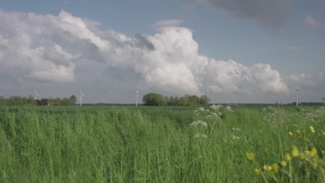 clouds passing by after a storm, real dutch sky's very peaceful - horizont über land stock-videos und b-roll-filmmaterial