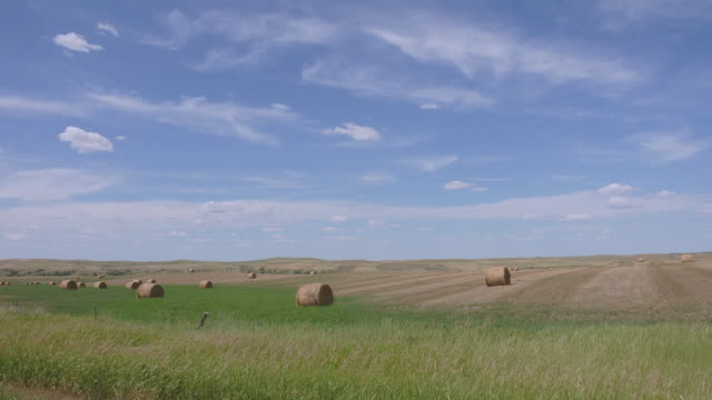 vidéos et rushes de ws tl clouds passing over field covered with bales of hay/ north dakota - dakota du nord
