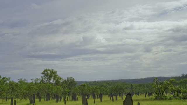 WS ZI T/L Clouds passing over Magnetic termite mounds in savanna in Top End / Darwin, Northern Territory, Australia.