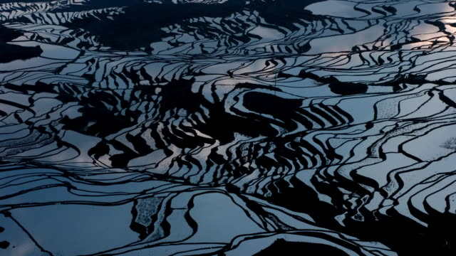 clouds reflected in rice paddy terraces, yuanyang, yunnan, china - rice terrace stock videos and b-roll footage