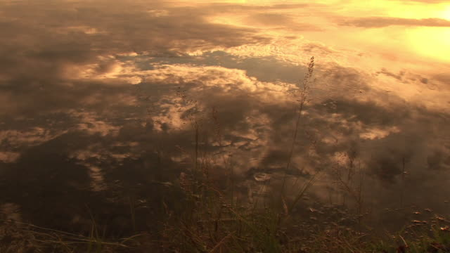 cu, clouds reflected in water at sunset, snake river, grand teton national park, wyoming, usa - snake river stock videos & royalty-free footage