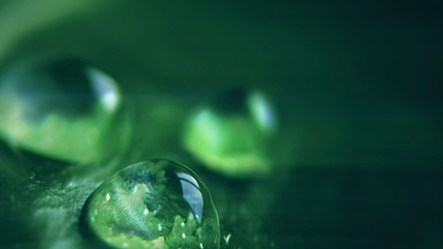 clouds reflected in water drops, cinemagraph - leaf stock videos & royalty-free footage