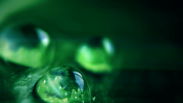clouds reflected in water drops, cinemagraph - foglia video stock e b–roll